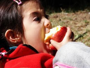 Alimentación y adolescencia